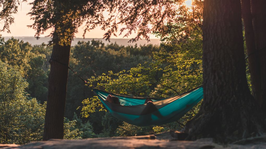 Sleeping above the groud in a backpacking hammock